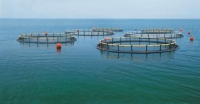 四川雅安启动第一次水产养殖种质资源普查